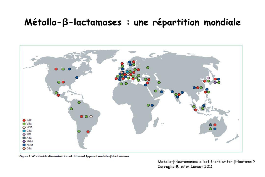 Métallo-β-lactamases : une répartition mondiale