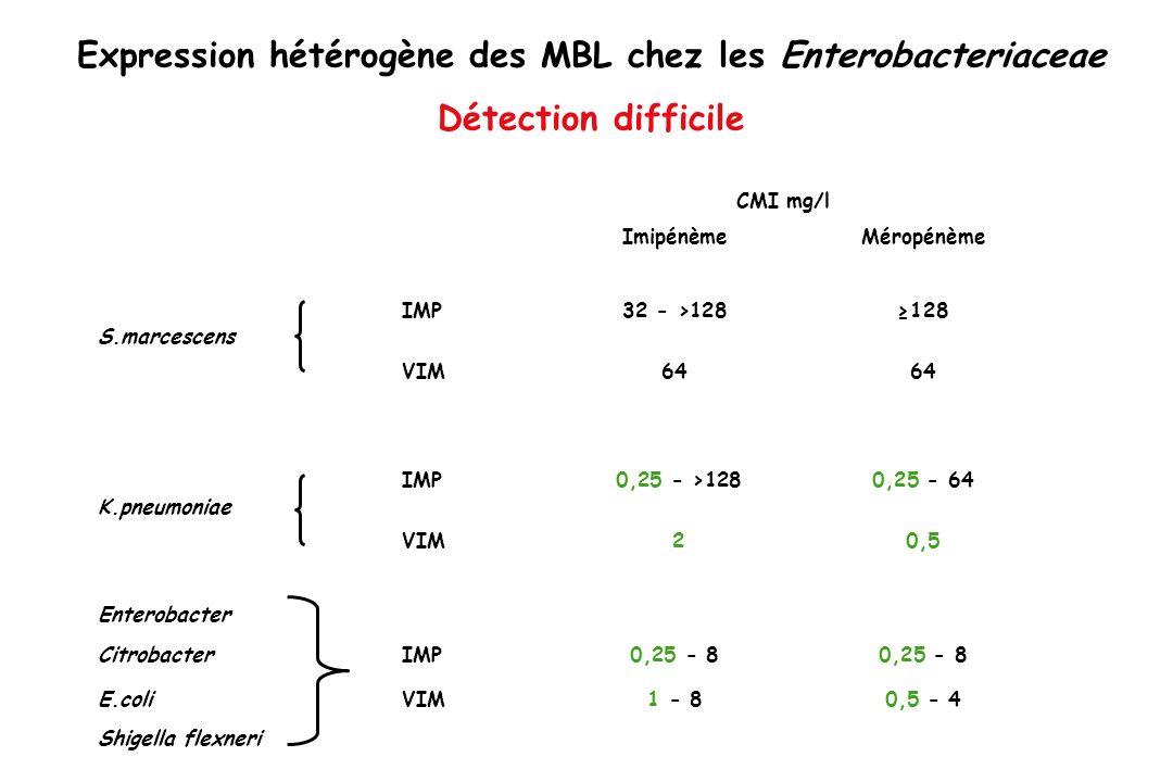 Expression hétérogène des MBL chez les Enterobacteriaceae Détection difficile
