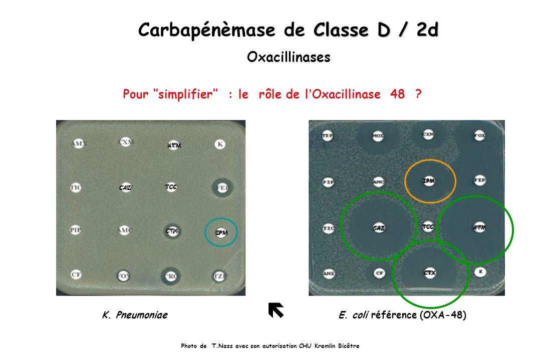 Carbapénèmase de Classe D / 2d