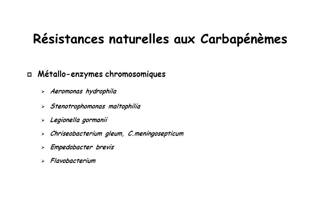 Résistances naturelles aux Carbapénèmes