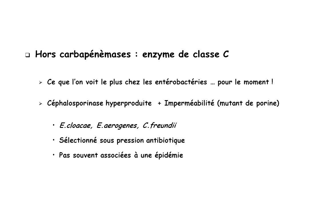 Hors carbapénèmases : enzyme de classe C