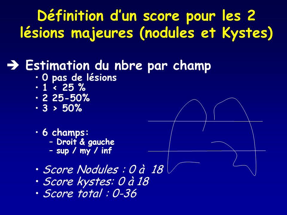 Définition d'un score pour les 2 lésions majeures (nodules et Kystes)