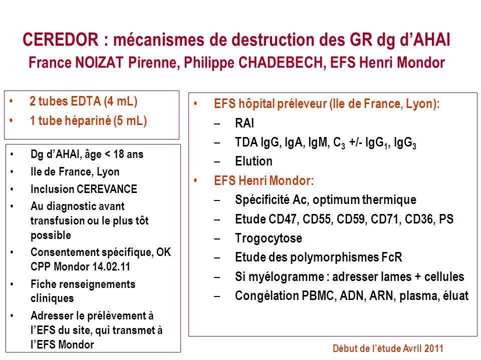 CEREDOR : mécanismes de destruction des GR dg d'AHAI France NOIZAT Pirenne, Philippe CHADEBECH, EFS Henri Mondor
