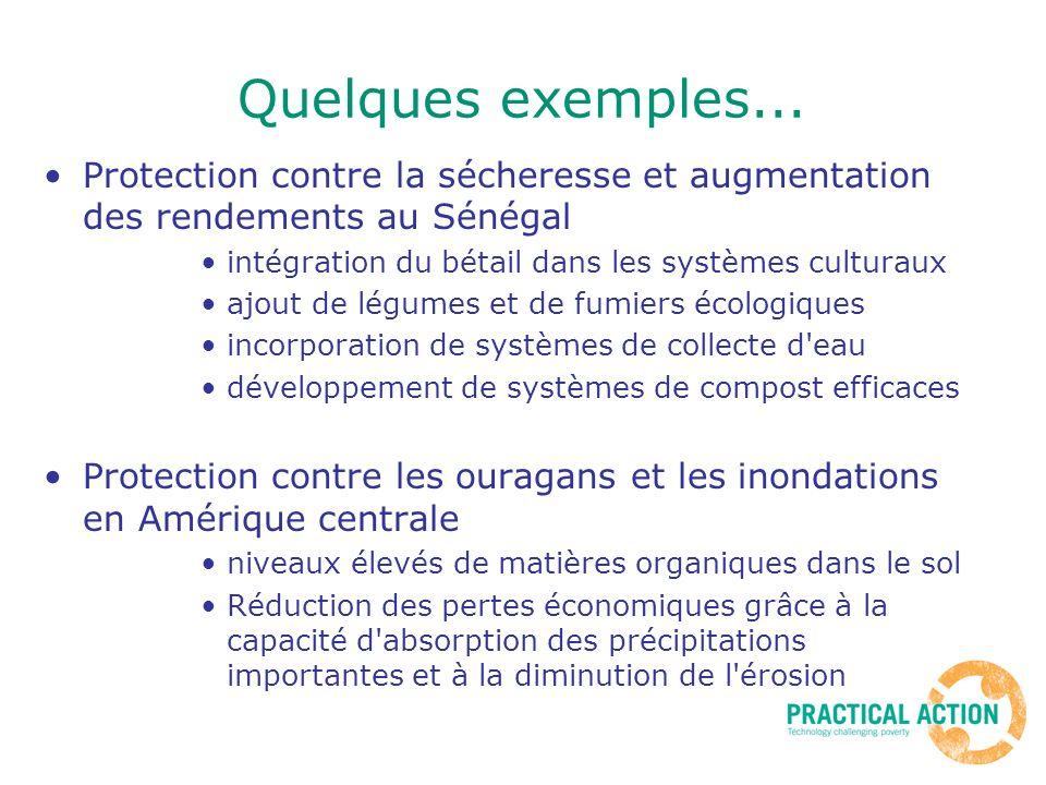 Quelques exemples... Protection contre la sécheresse et augmentation des rendements au Sénégal. intégration du bétail dans les systèmes culturaux.