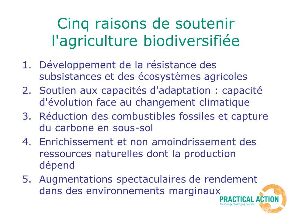 Cinq raisons de soutenir l agriculture biodiversifiée