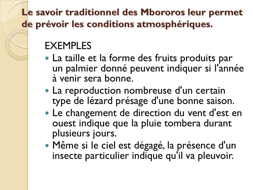 Le savoir traditionnel des Mbororos leur permet de prévoir les conditions atmosphériques.