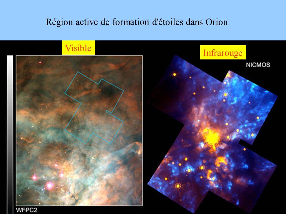 Région active de formation d étoiles dans Orion