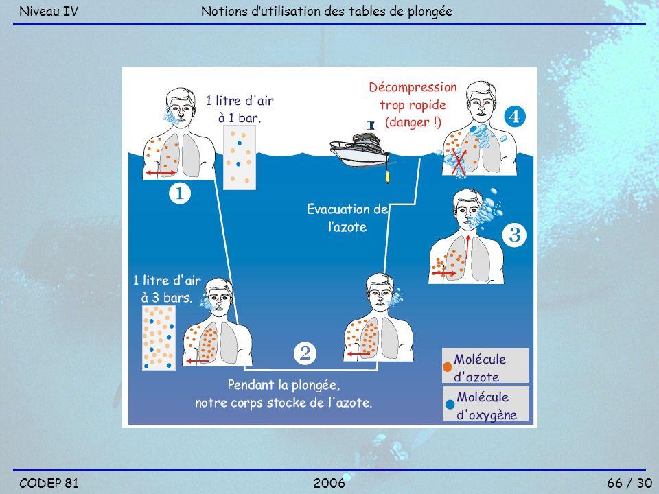 Niveau IV Notions d'utilisation des tables de plongée CODEP 81 2006 66 / 30
