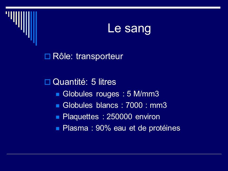 Le sang Rôle: transporteur Quantité: 5 litres