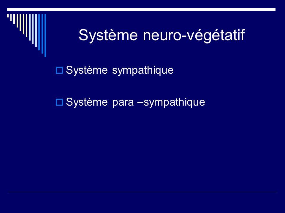 Système neuro-végétatif