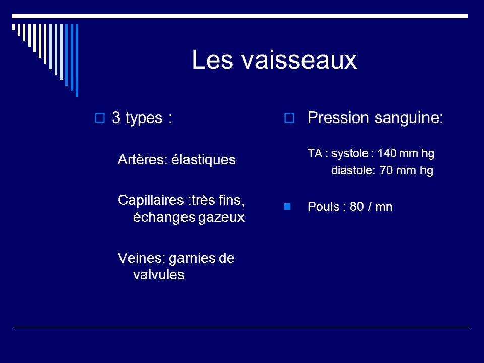 Les vaisseaux 3 types : Pression sanguine: Artères: élastiques