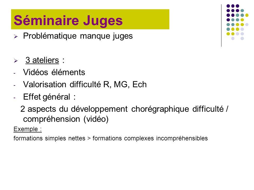 Séminaire Juges Problématique manque juges 3 ateliers :