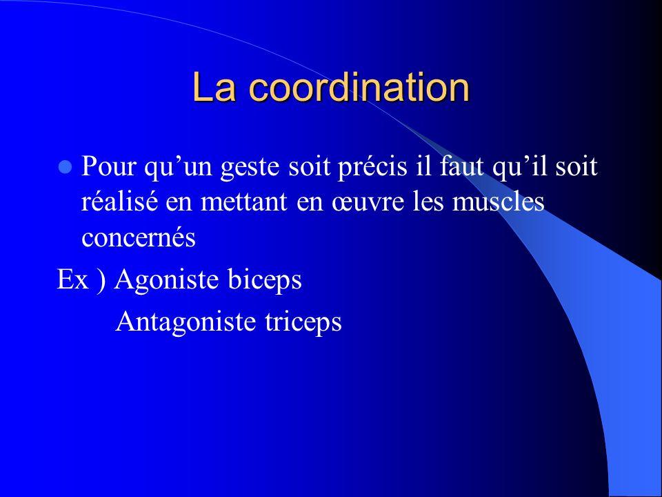 La coordination Pour qu'un geste soit précis il faut qu'il soit réalisé en mettant en œuvre les muscles concernés.