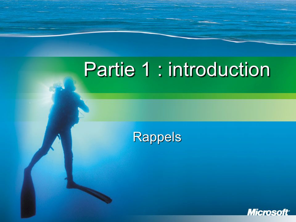 Partie 1 : introduction Rappels
