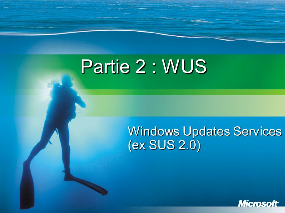 Windows Updates Services (ex SUS 2.0)