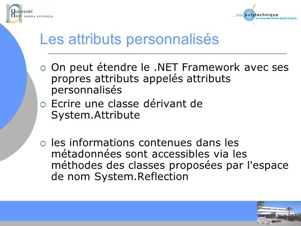 Les attributs personnalisés