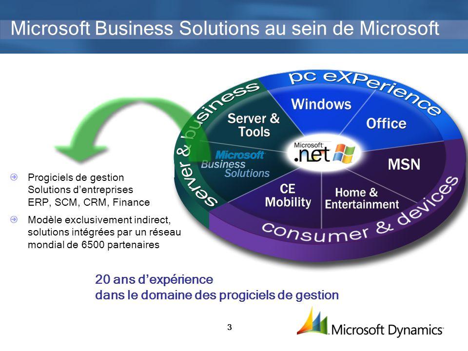 Microsoft Business Solutions au sein de Microsoft