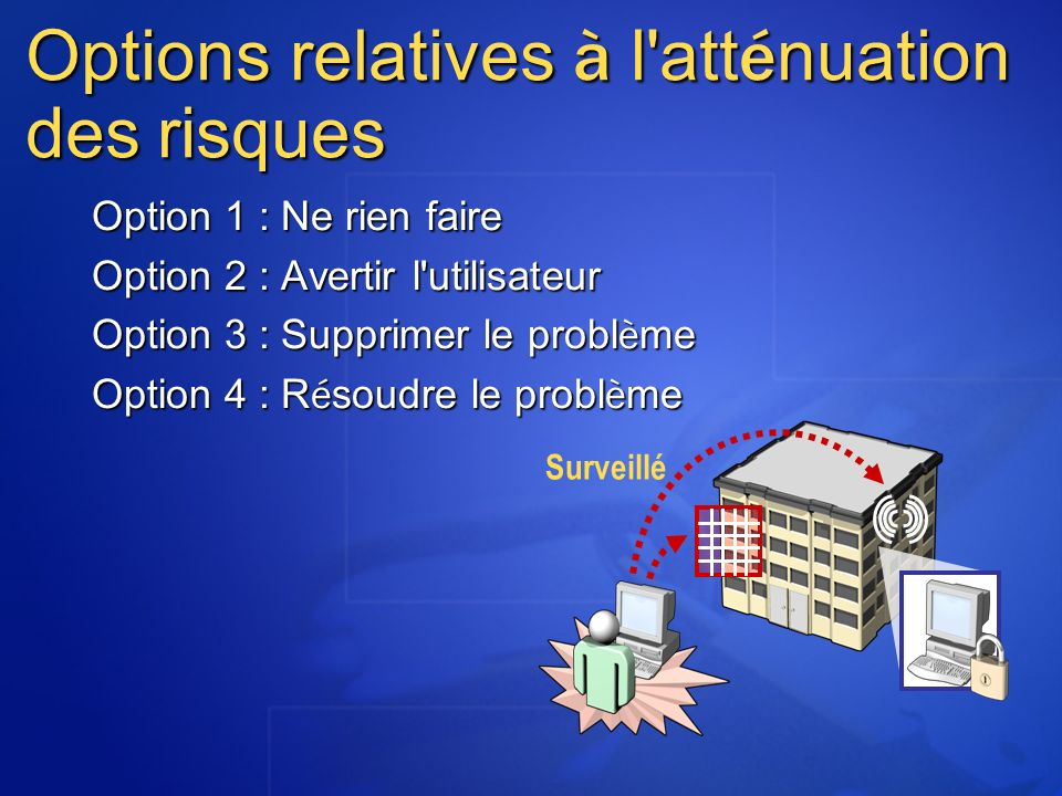 Options relatives à l atténuation des risques