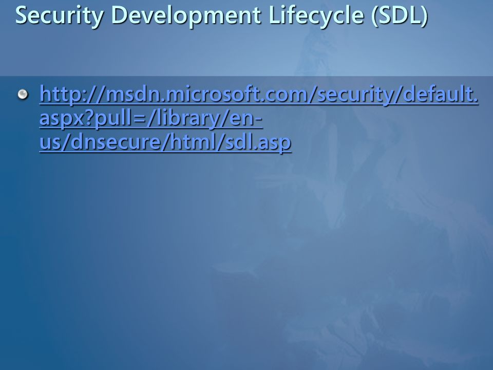 Security Development Lifecycle (SDL)