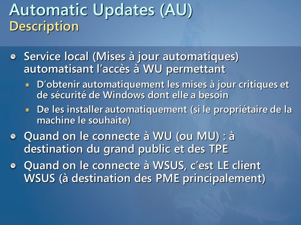 Automatic Updates (AU) Description