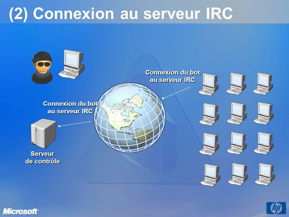 (2) Connexion au serveur IRC