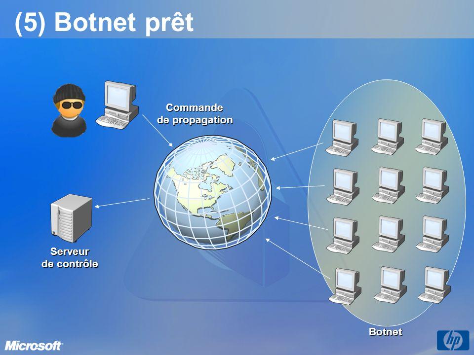 (5) Botnet prêt Commande de propagation Serveur de contrôle Botnet