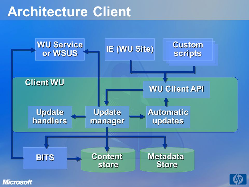 Architecture Client WU Service or WSUS IE (WU Site) Custom scripts