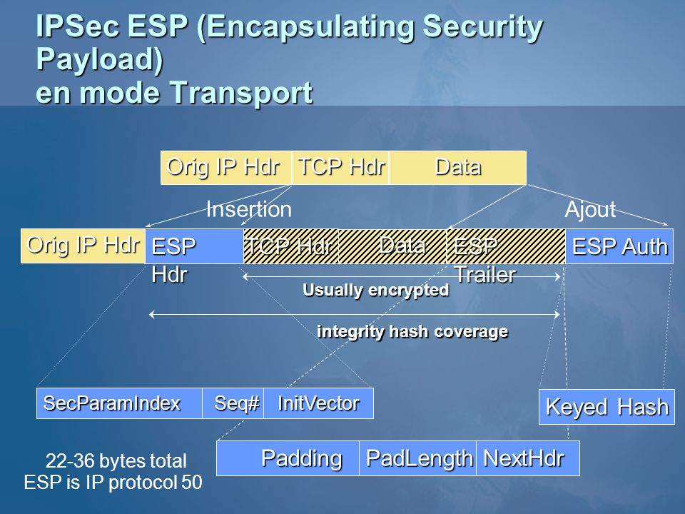 IPSec ESP (Encapsulating Security Payload) en mode Transport