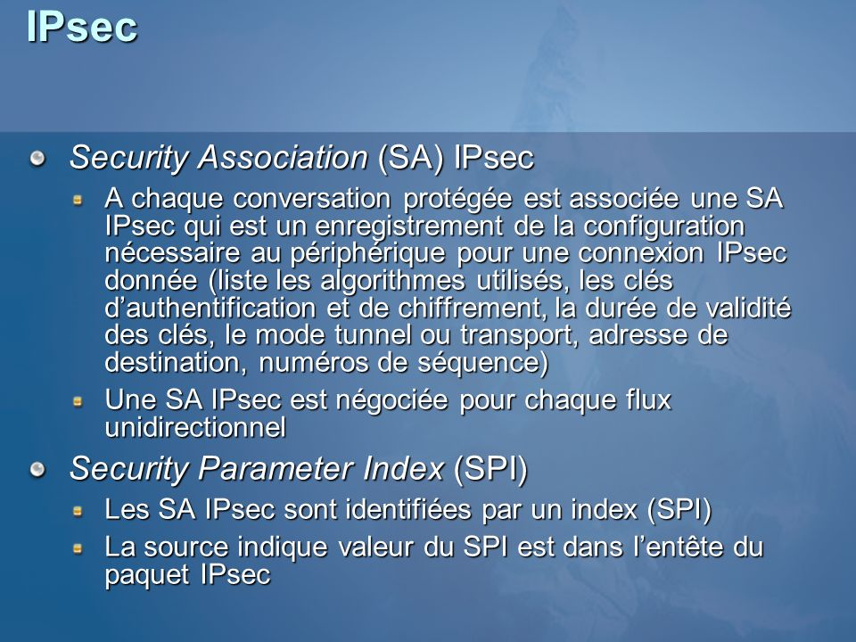 IPsec Security Association (SA) IPsec Security Parameter Index (SPI)