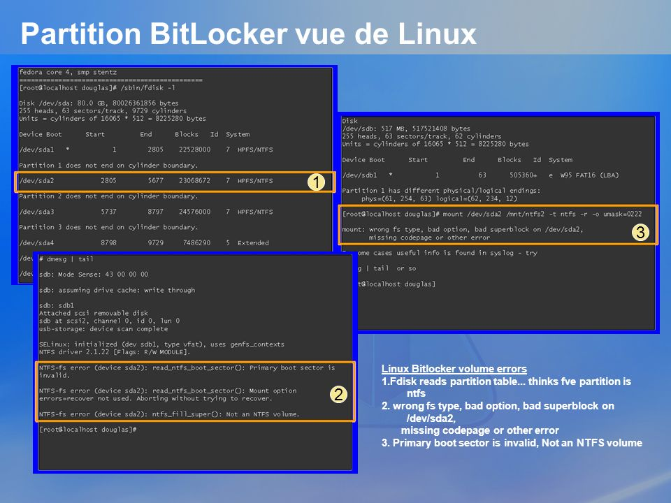 Partition BitLocker vue de Linux