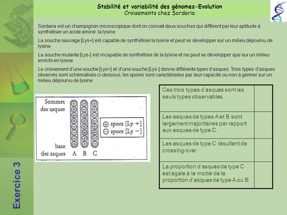 Stabilité et variabilité des génomes-Evolution