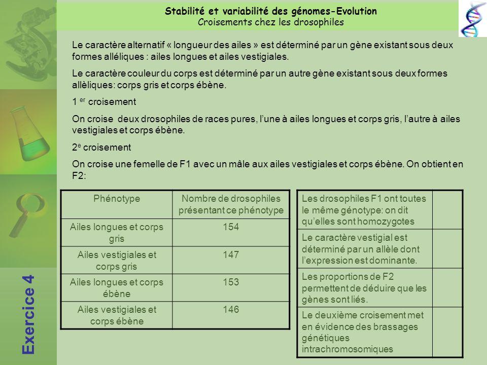 Exercice 4 Stabilité et variabilité des génomes-Evolution