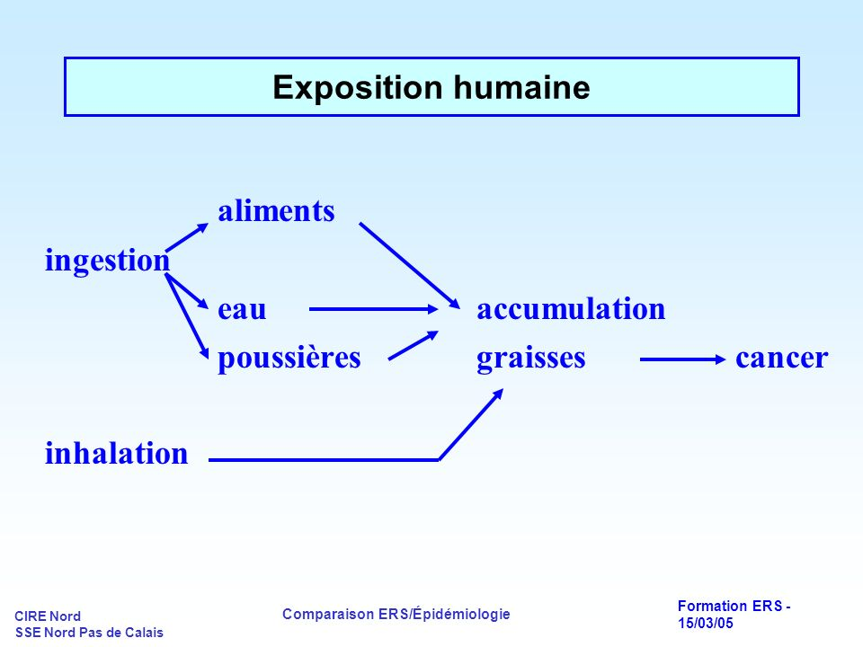 aliments Exposition humaine ingestion eau accumulation