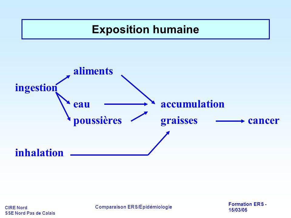 aliments Exposition humaine ingestion eau accumulation