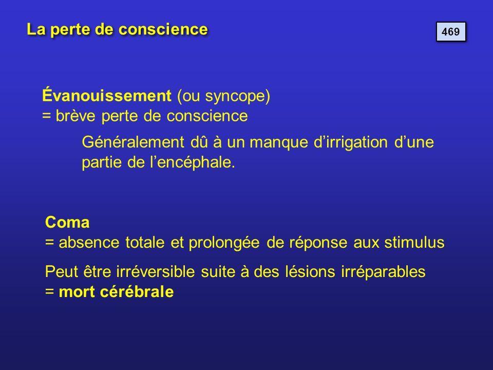 Évanouissement (ou syncope) = brève perte de conscience