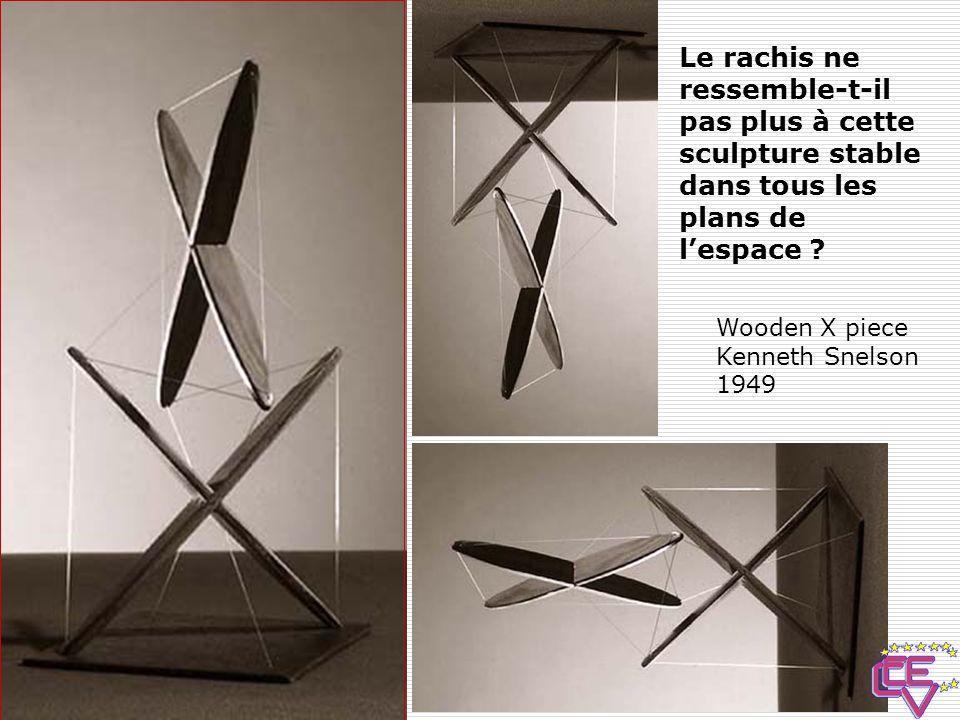 Le rachis ne ressemble-t-il pas plus à cette sculpture stable dans tous les plans de l'espace