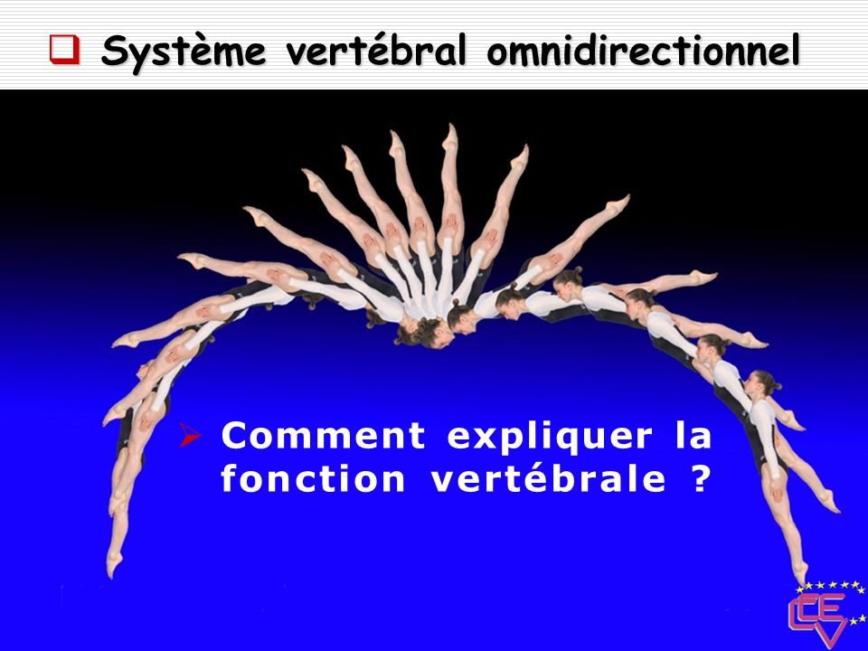 Système vertébral omnidirectionnel