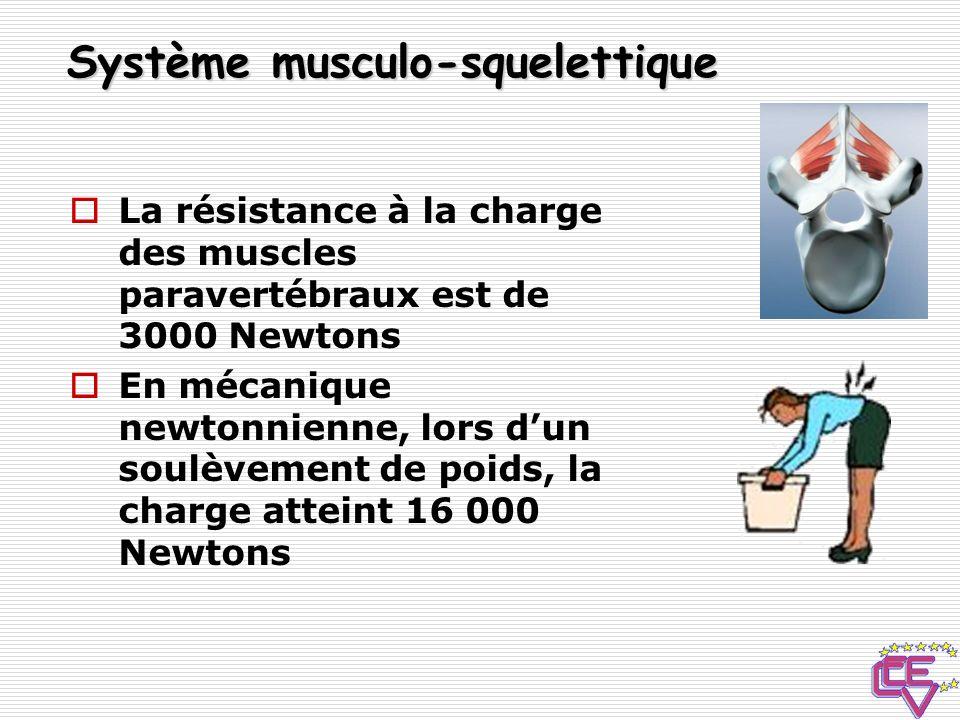 Système musculo-squelettique