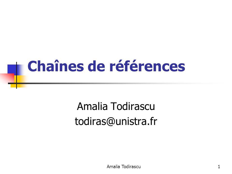 Amalia Todirascu todiras@unistra.fr