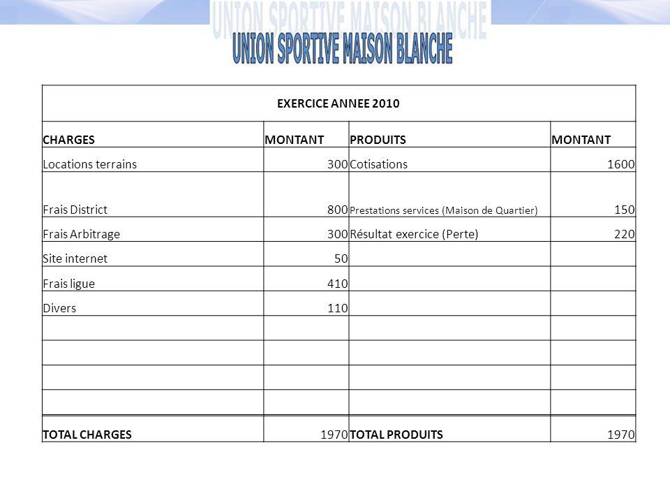 Résultat exercice (Perte) 220 Site internet 50 Frais ligue 410 Divers