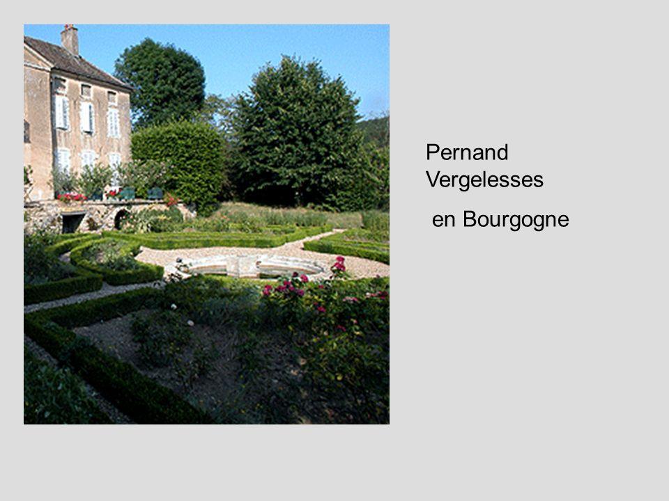 Pernand Vergelesses en Bourgogne