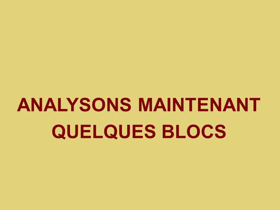 ANALYSONS MAINTENANT QUELQUES BLOCS