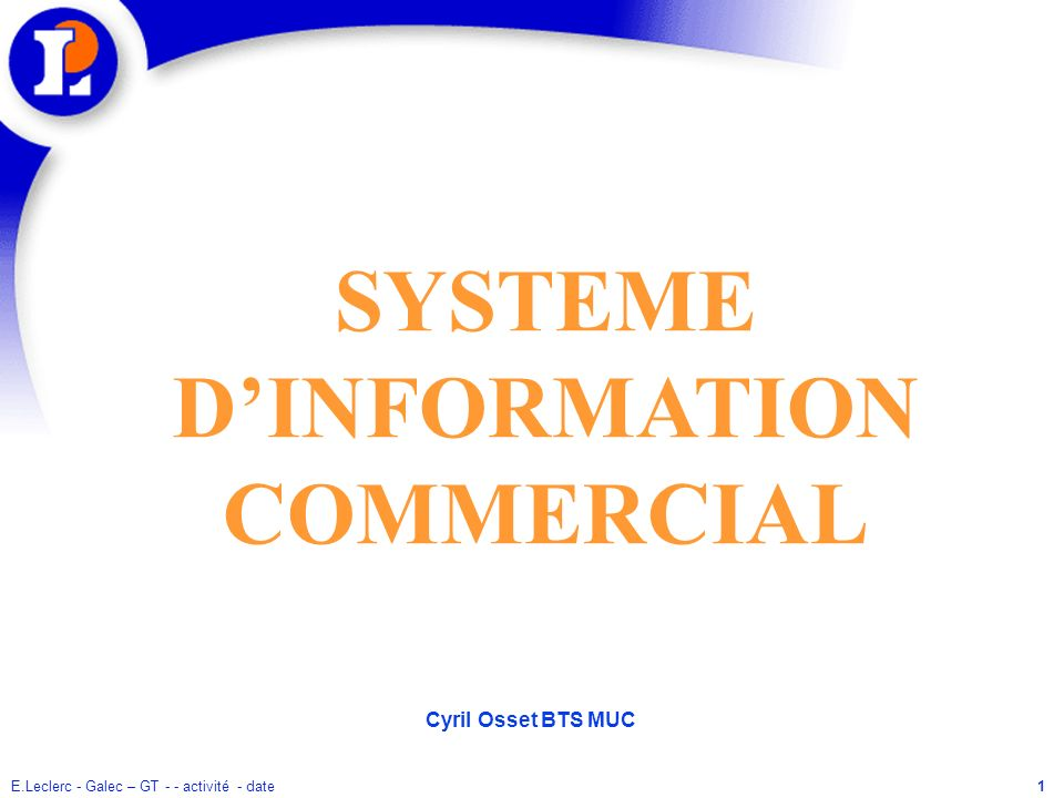 SYSTEME D'INFORMATION COMMERCIAL