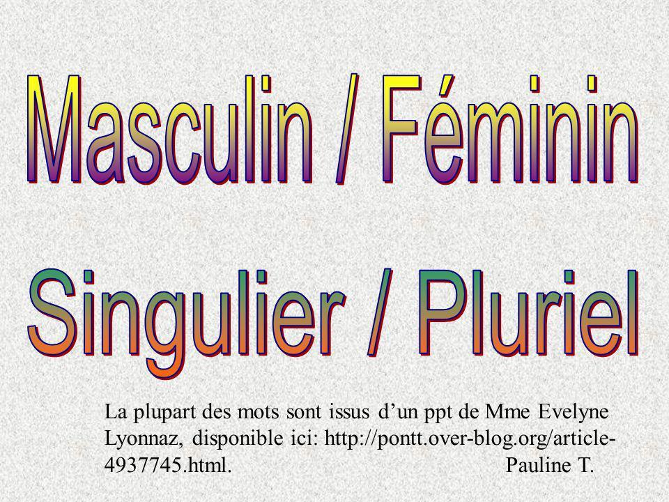 Masculin / Féminin Singulier / Pluriel