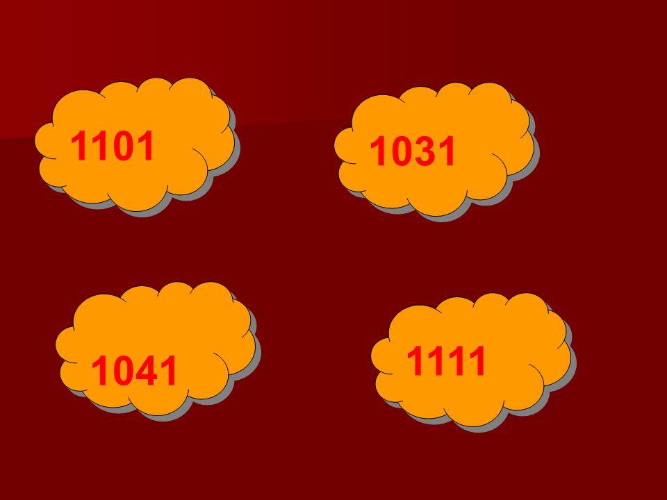 1101 1031 1041 1111