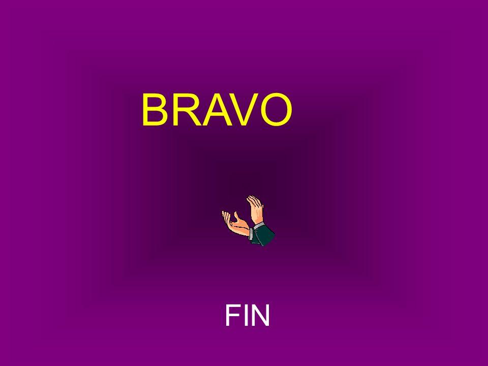 bravo BRAVO FIN