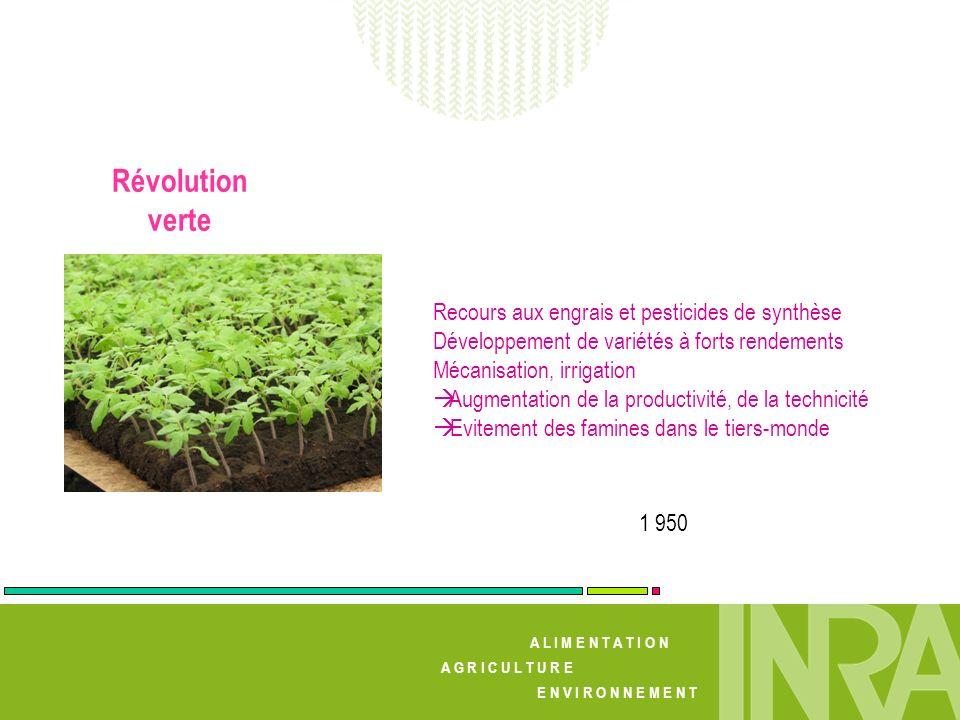 Révolution verte Recours aux engrais et pesticides de synthèse