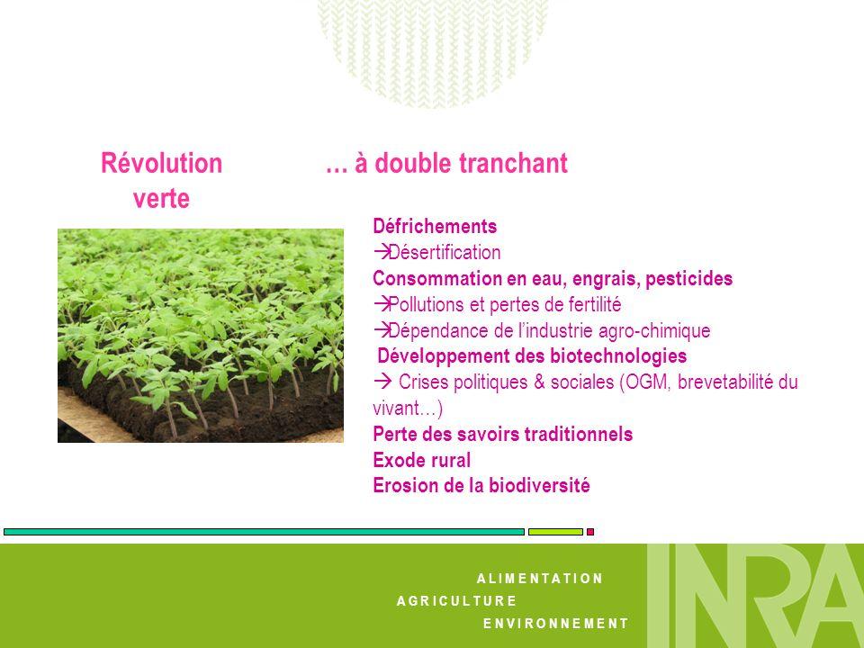 Révolution verte … à double tranchant Défrichements Désertification