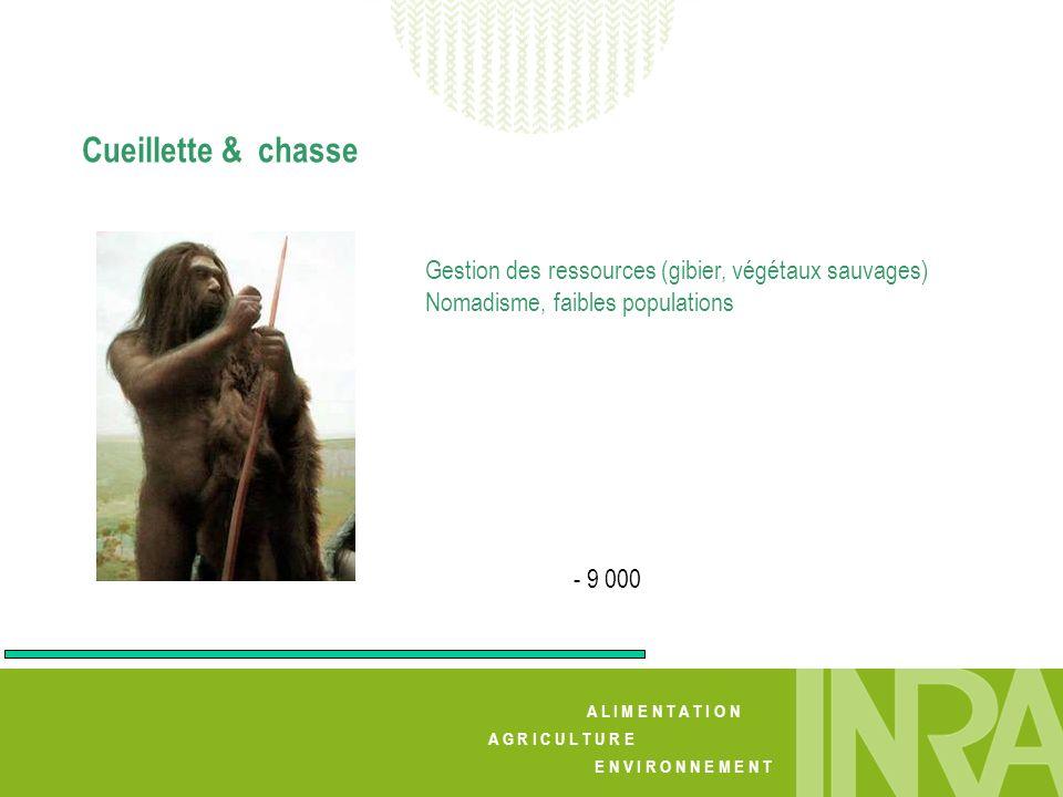 Cueillette & chasse Gestion des ressources (gibier, végétaux sauvages) Nomadisme, faibles populations.
