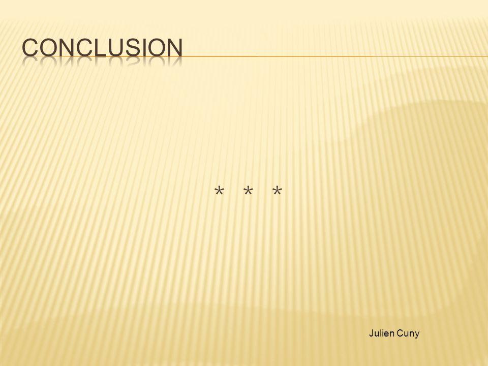 Conclusion * * * Julien Cuny